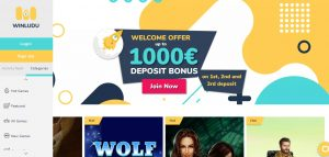 Winludu Casino review